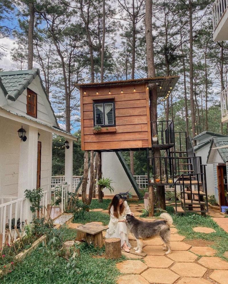 Top 9 Homestay giá rẻ view đẹp nhất tại Kon Tum