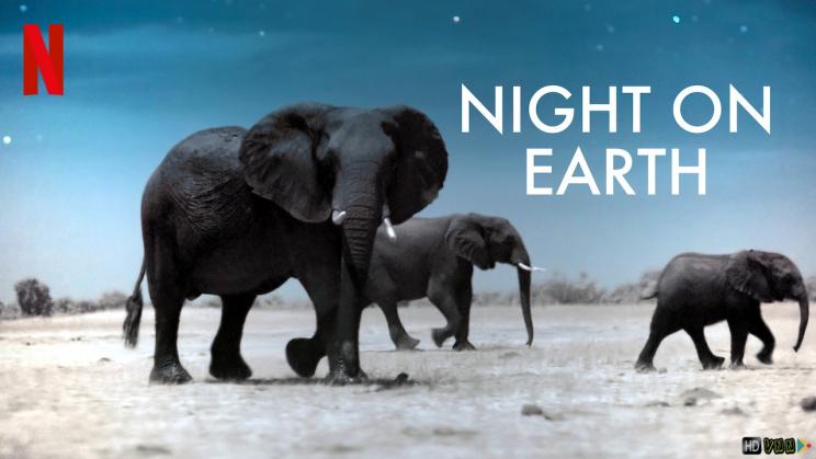 Top 10 Phim tài liệu về môi trường giúp bạn thêm trân trọng Mẹ Trái Đất hay nhất