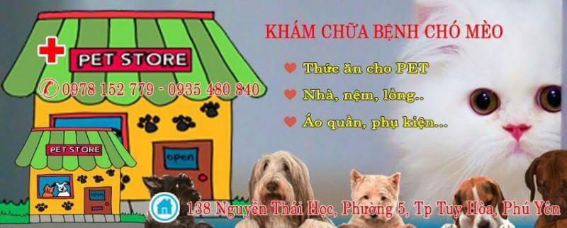 Top 3 Phòng khám thú y uy tín nhất tại Phú Yên