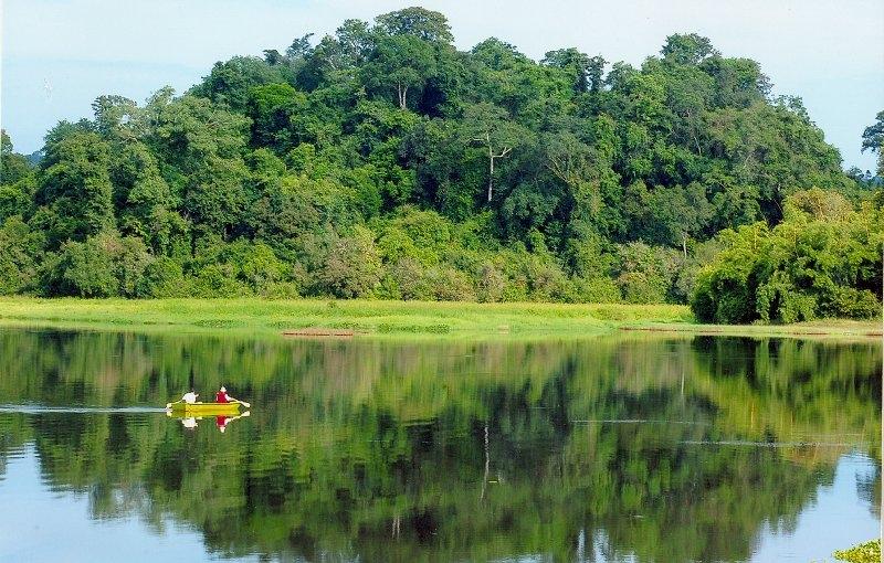Top 10 Khu rừng nguyên sinh đẹp nhất Việt Nam