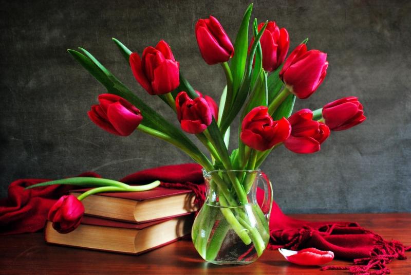 Top 9 Màu sắc đẹp nhất của hoa Tulip và ý nghĩa của chúng