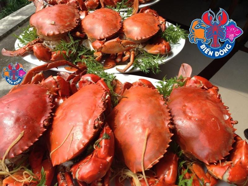 Top 10 Địa chỉ ăn cua ngon nhất tại Hà Nội