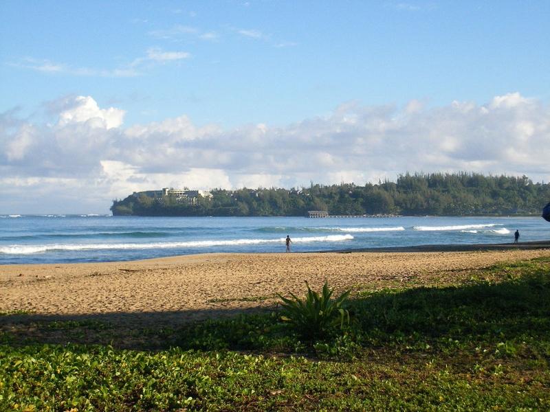 Top 8 Bãi biển tuyệt đẹp ở Hawaii có thể bạn chưa biết
