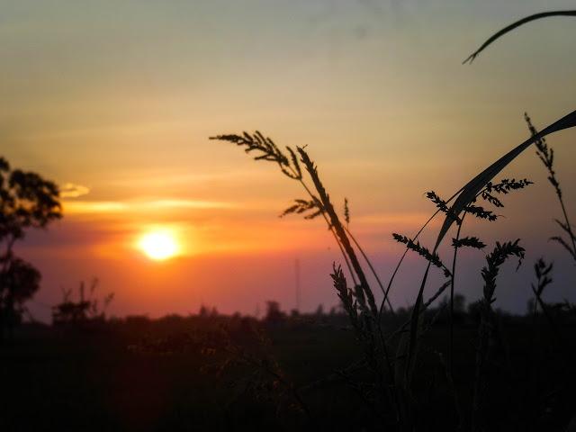 Top 10 Bài thơ hay của nhà thơ Nguyễn Phong Việt