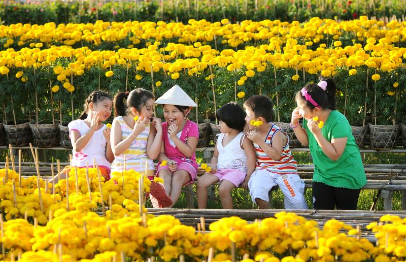 Bài văn tả cảnh chợ hoa ngày tết quê em số 4