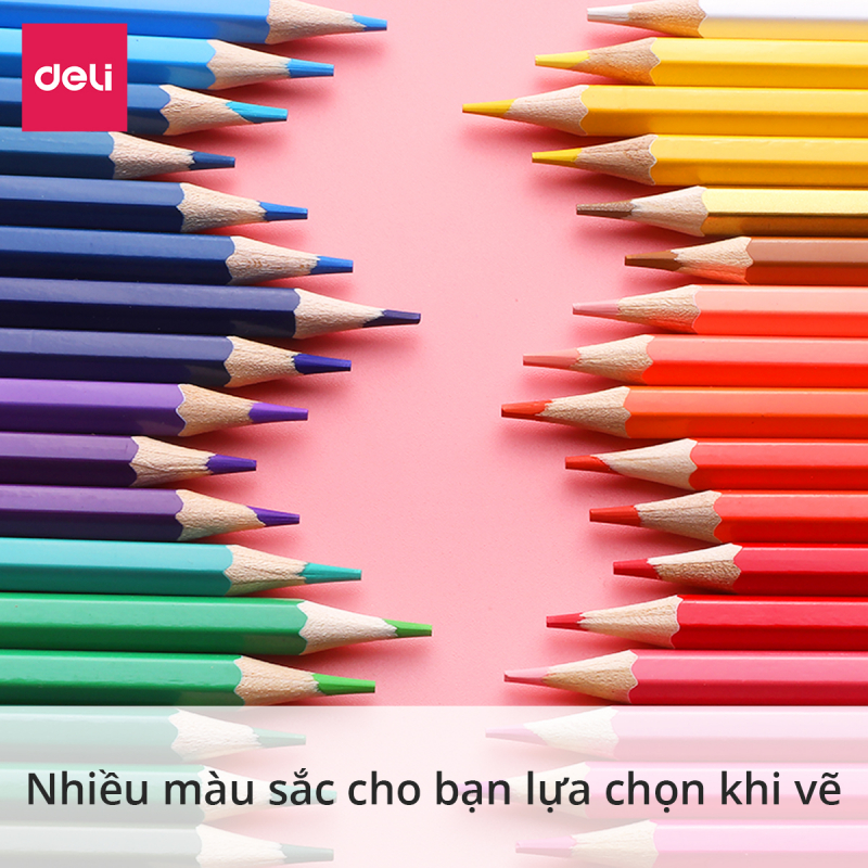 Bút chì màu dạng cốc Deli - Bút chì gỗ khô tự nhiên an toàn