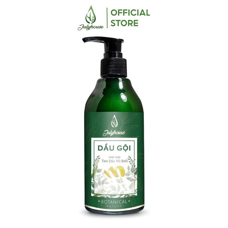 Top 10 Loại dầu gội hỗ trợ trị viêm da tiết bã nhờn và nấm da đầu