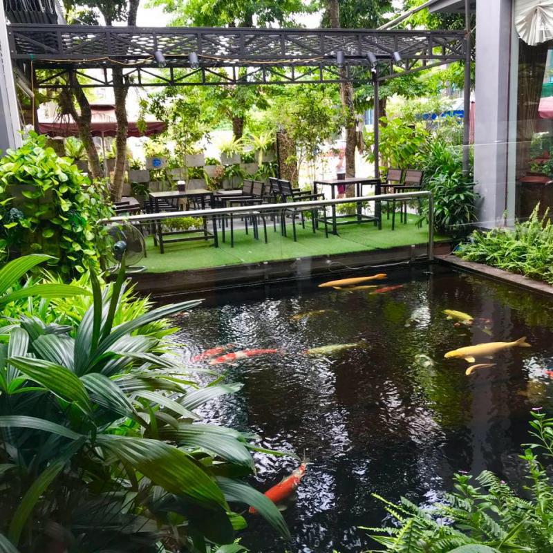 Không gian sân vườn với hồ cá Koi