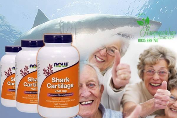 Sụn Vi Cá Mập Now Shark Cartilage Freeze Dried 750mg được sản xuất bởi Now Food, thương hiệu uy tín tại Mỹ và đã được ưa chuộng trên thị trường quốc tế suốt 40 năm qua,