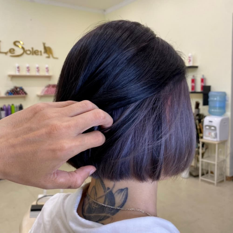 Le Soliel Hair