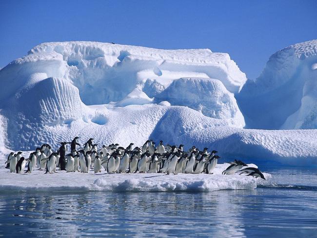 Sa mạc Nam cực