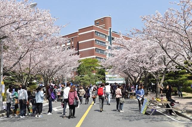 Top 10 Lý do bạn nên du học tại Hàn Quốc