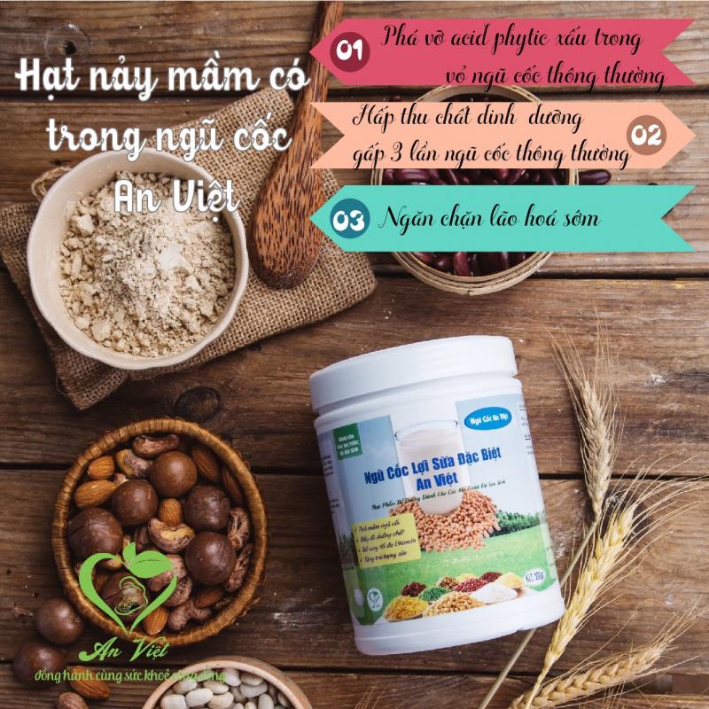 Ngũ cốc lợi sữa đặc biệt An Việt