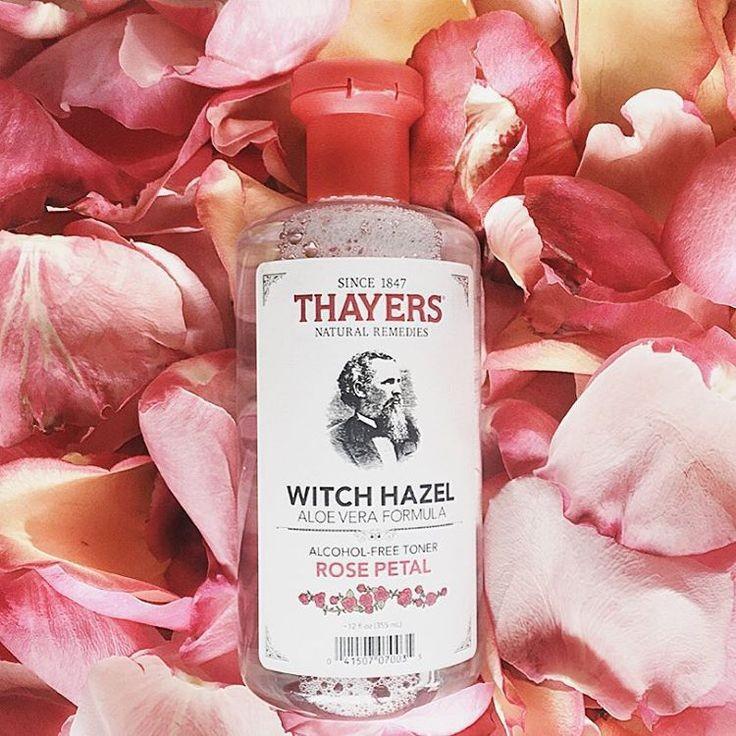 Nước hoa hồng không cồn THAYERS - Hương hoa hồng