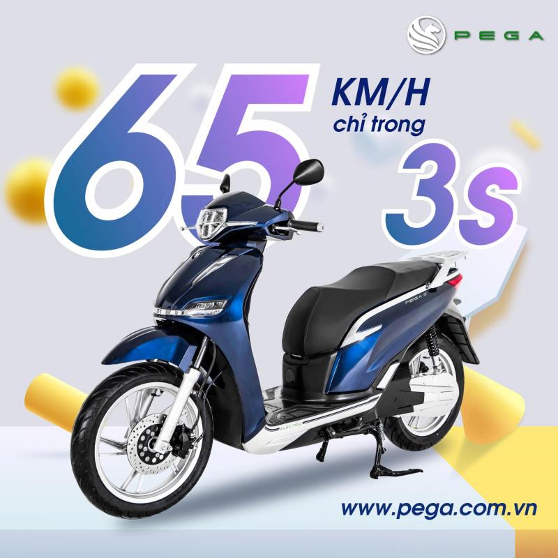 pega.com.vn