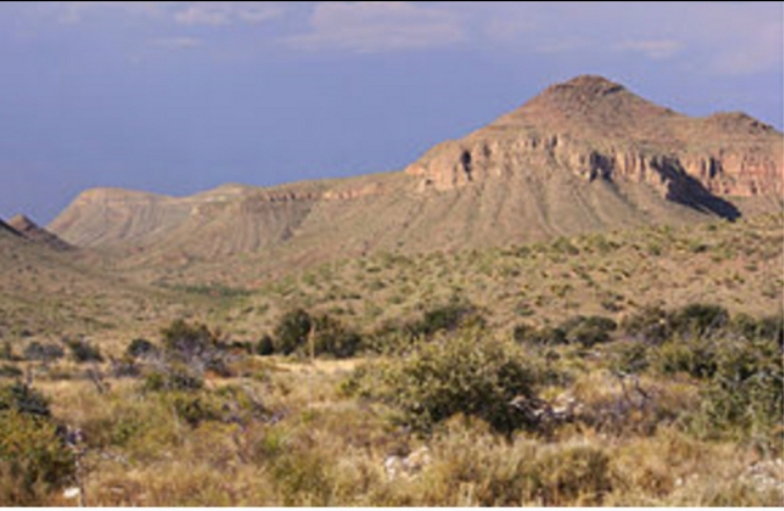 Sa mạc Chihuahua