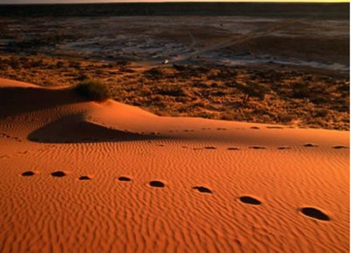 Sa mạc Great Victoria