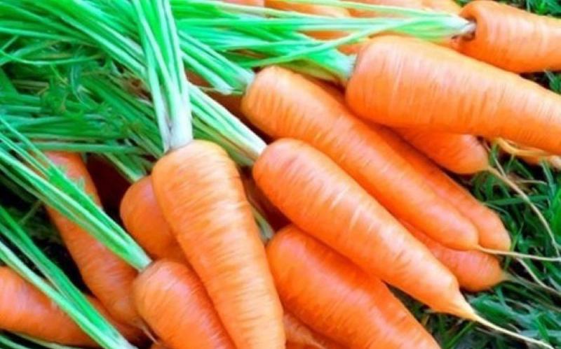 Sinh tố đu đủ, cà rốt