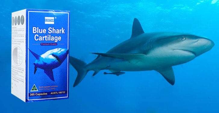 Sụn Vi Cá Mập Blue Shark Cartilage 750mg Úc Costar
