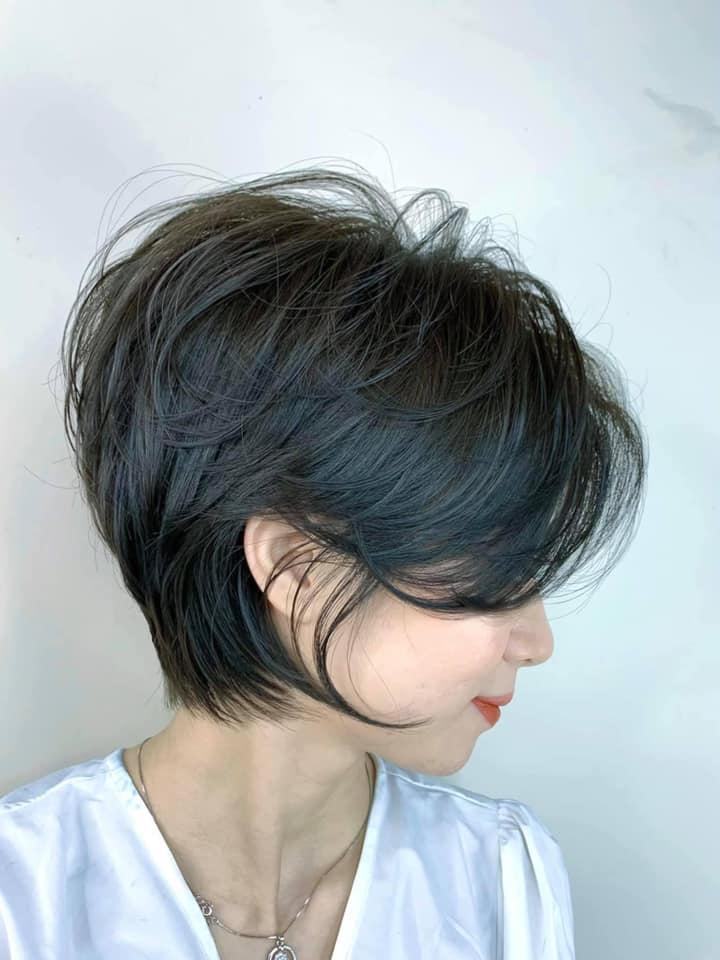 Trần Tiến Hair