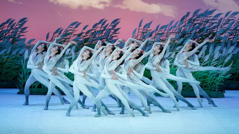 Trung tâm dạy nhảy Hàn Quốc PC Crew sở hữu đội ngũ Giảng viên trên 24 năm kinh nghiệm