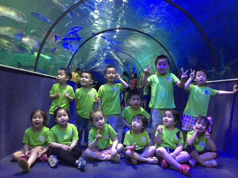Các bé khám phá Thủy Cung Vinpearl Land Aquarium