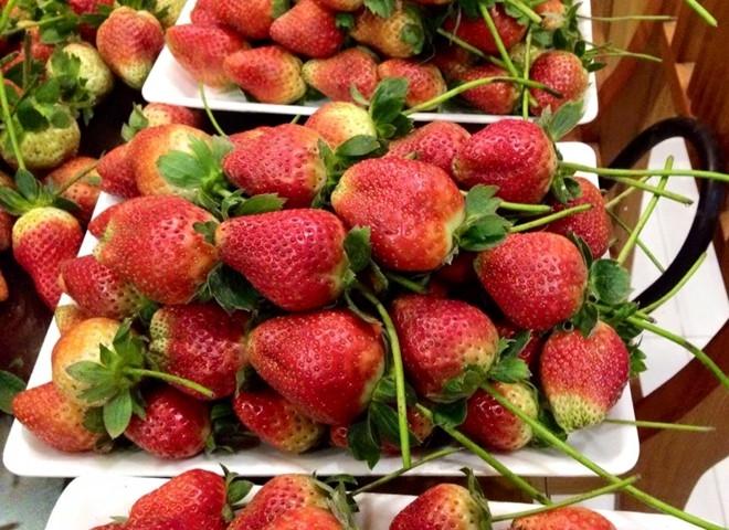 Những trái dâu chín mọng đỏ au