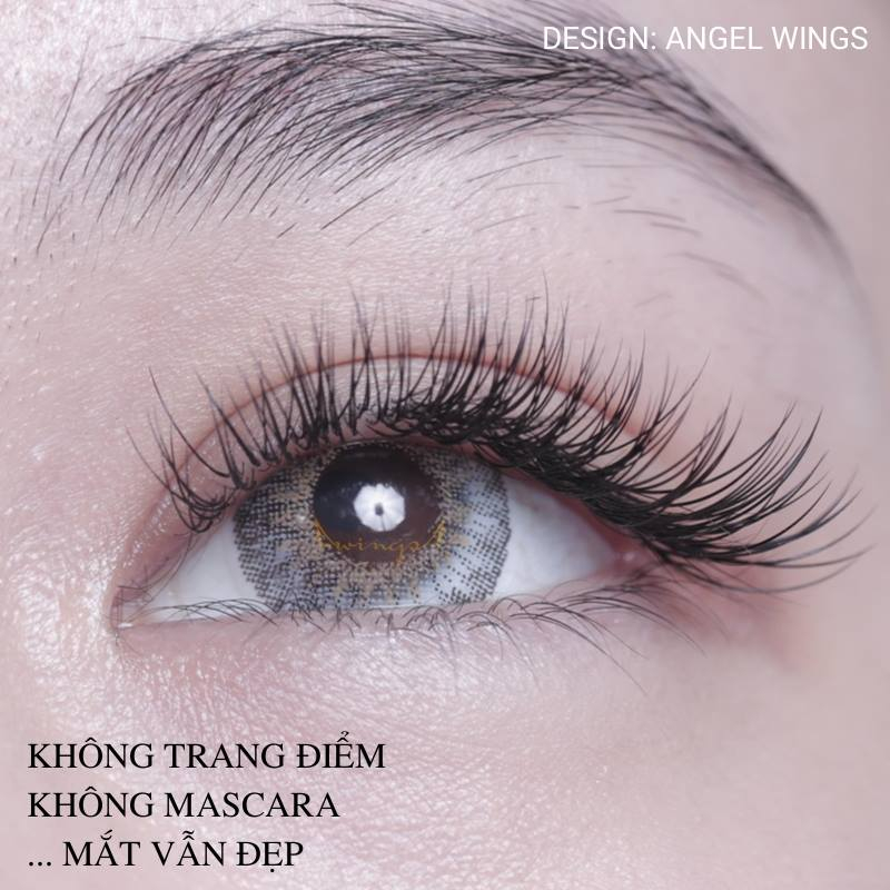 Wings Lashes
