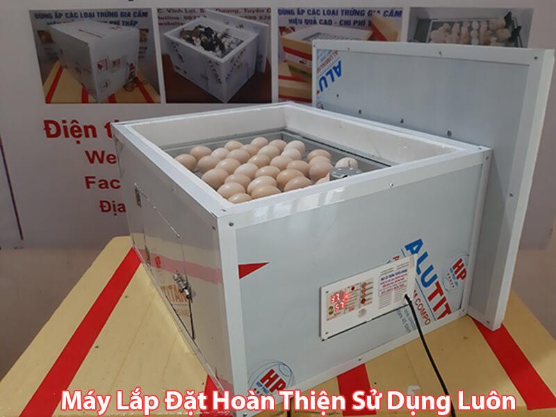 Công ty TNHH Máy Ấp Trứng Tuyên Quang