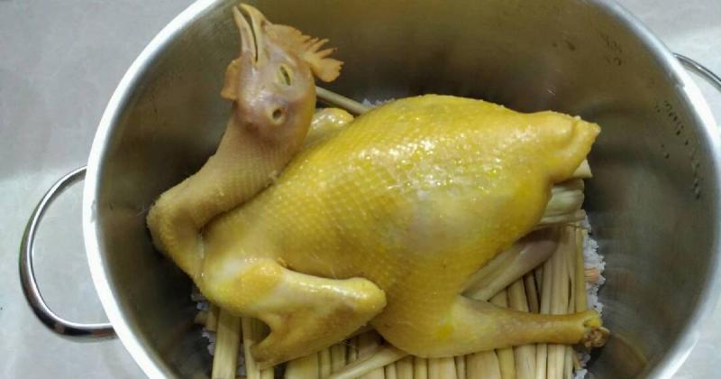 Top 10 Cách làm món gà hấp thơm ngon tại nhà mà bà nội trợ nào cũng nên biết