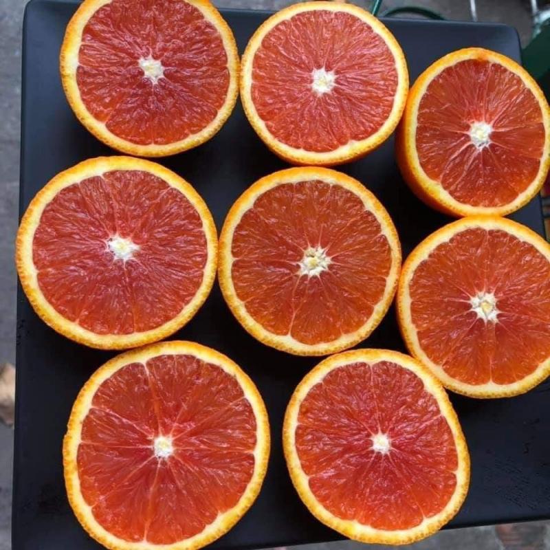 Top 6 Cửa hàng trái cây sạch và an toàn tại TP. Vinh, Nghệ An