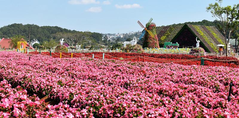 Top 8 Địa điểm thú vị nhất không nên bỏ qua khi tới Đà Lạt, Lâm Đồng