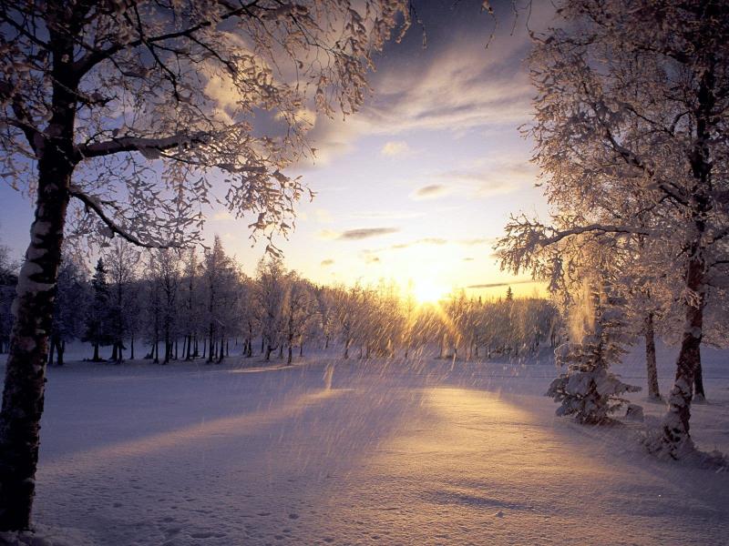 Top 20 Bài hát hay nhất dành cho mùa đông